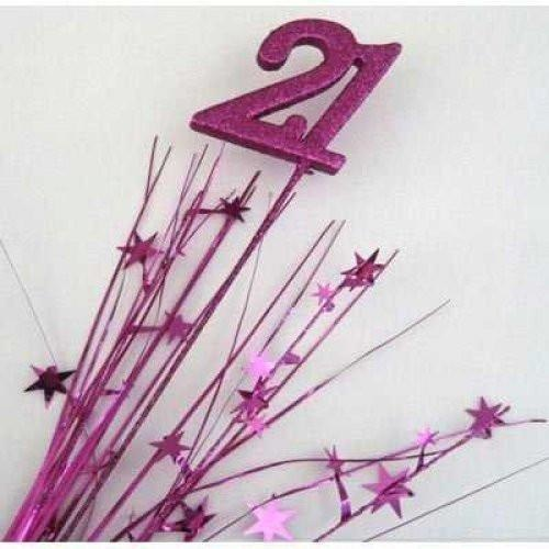 Foam Spray Fuchsia Number 21 #207028 - Each