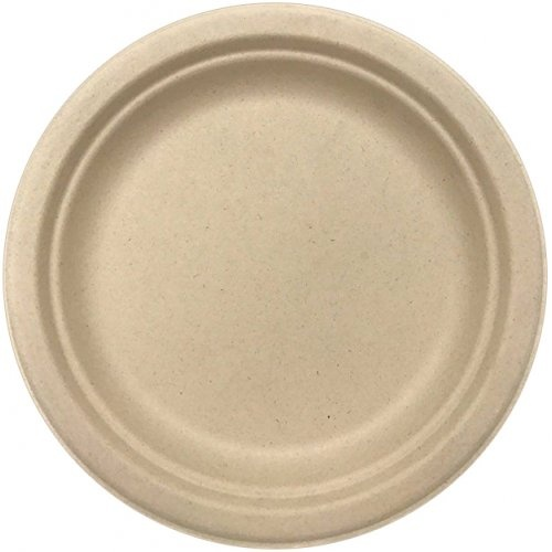 Sugarcane Lunch Plates Natural #30400103 - 10Pk (Pkgd.)
