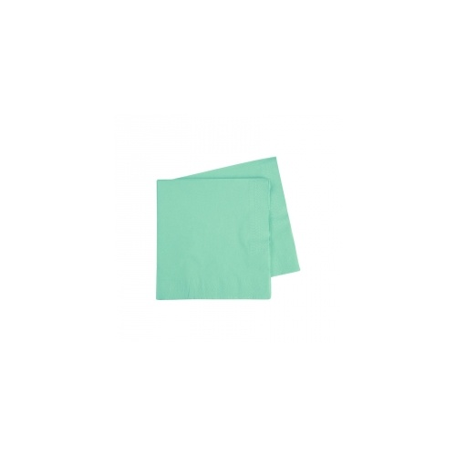 Cocktail Napkin Mint Green 250mm #406070MTP - 20Pk (Pkgd.)