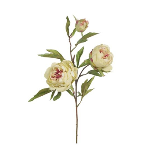 Peony Light Green 74cml #FI6650LG - Each (Upkgd.)