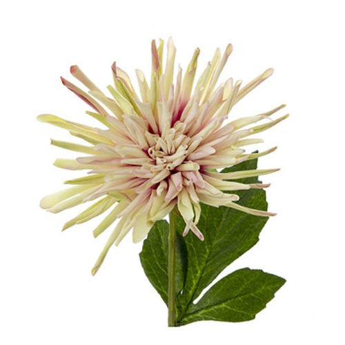 Dahlia Spray Soft Pink & Green #FLD904GR - Each (Upkgd.)